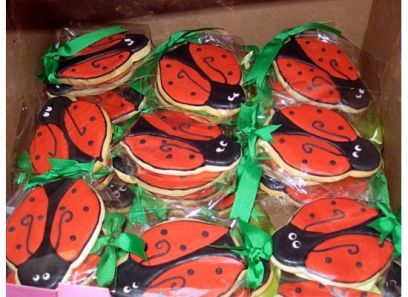 Ladybug Birthday Party Photo