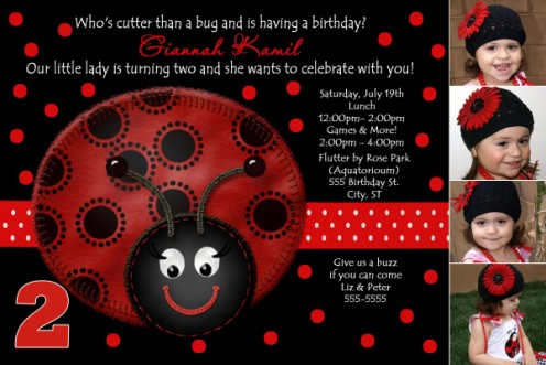 Red Black 2 Year Old Ladybug Birthday Invitation