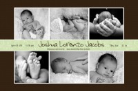 Chocolate & Sage Banner Collage Birth Announcement